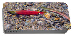 Portable Battery Charger featuring the photograph Spawning Pair by Jim Thompson