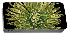 Portable Battery Charger featuring the photograph Spider Mum by Jerry Fornarotto