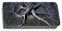 Portable Battery Charger featuring the photograph Spider Roots At Manasquan Reservoir by Gary Slawsky
