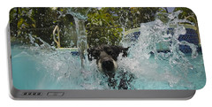 Splash Down Portable Battery Charger by Quinn Sedam