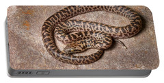 Spotted Python Antaresia Maculosa Portable Battery Charger