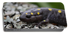 Spotted Salamander Portable Battery Charger