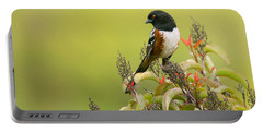 Portable Battery Charger featuring the photograph Spotted Towhee by Ram Vasudev
