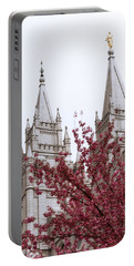 Temple Portable Battery Chargers