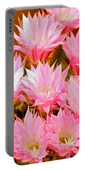 Spring Cactus Portable Battery Charger by Michael Cinnamond