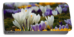 Portable Battery Charger featuring the photograph Spring Crocus by Dianne Cowen