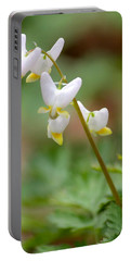 Spring Flower Portable Battery Charger by Tiffany Erdman