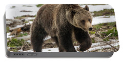 Portable Battery Charger featuring the photograph Spring Grizzly Bear by Jack Bell