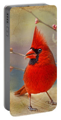 Spring Male Norther Cardinal Portable Battery Charger by Debbie Portwood