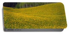 Spring Meadow Portable Battery Charger by Leland D Howard