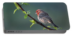 Song Bird In Spring Portable Battery Charger by Nava Thompson
