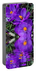 Portable Battery Charger featuring the photograph Spring Reflection by Judy Palkimas