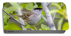 Spring Scene Portable Battery Charger by Doug Lloyd