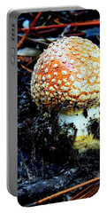 Portable Battery Charger featuring the photograph Sprout by Faith Williams