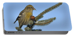 Spruce Cone Feeder Portable Battery Charger by Tony Beck