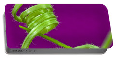 Portable Battery Charger featuring the photograph Squash Tendril Macro by Sandra Foster