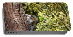 Portable Battery Charger featuring the photograph Squirrel by Kate Brown