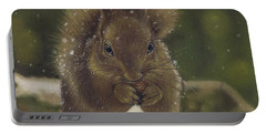 Squirrel Nutkin Portable Battery Charger