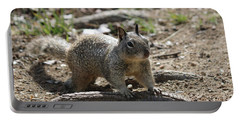 Squirrel Play  Portable Battery Charger