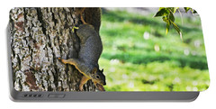 Squirrel With Pecan Portable Battery Charger by Debbie Portwood