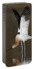 Portable Battery Charger featuring the photograph Sstretchhh by Bryan Keil