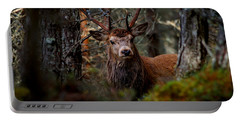 Portable Battery Charger featuring the photograph Stag In The Woods by Gavin Macrae