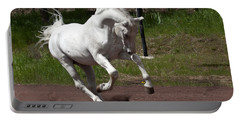 Stallion Portable Battery Charger by Wes and Dotty Weber