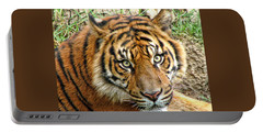 Staring Tiger Portable Battery Charger