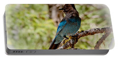 Stellar Jay Portable Battery Charger
