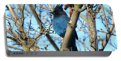 Steller's Jay In Winter Portable Battery Charger