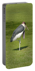 Portable Battery Charger featuring the photograph Stork by Charles Beeler