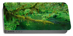 Stream Flowing Through A Rainforest Portable Battery Charger