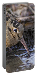 Streamside Woodcock Portable Battery Charger