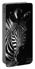 Striped Beauty Portable Battery Charger