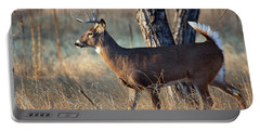 Portable Battery Charger featuring the photograph Strutting Buck by Jim Garrison