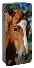 Stud Horse  Portable Battery Charger