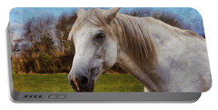 Study Of A Horse Portable Battery Charger