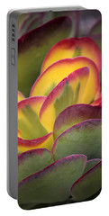 Succulent Light Portable Battery Charger