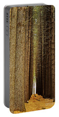 Sugar Pine Walk Portable Battery Charger