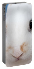 sugar the easter bunny 1 -A curious and cute white rabbit close up Portable Battery Charger by Pedro Cardona
