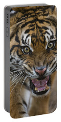 Sumatran Tiger Male Snarling Native Portable Battery Charger