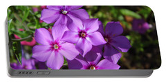 Portable Battery Charger featuring the photograph Summer Purple Phlox by D Hackett