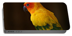 Sun Conure Parrot Portable Battery Charger