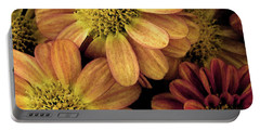 Portable Battery Charger featuring the photograph Sun Fans by Jean OKeeffe Macro Abundance Art