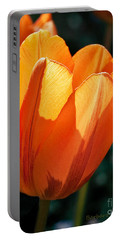 Portable Battery Charger featuring the photograph Sun Kissed Tulip by Barbara McMahon