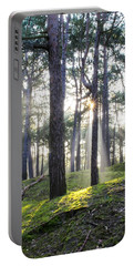 Sunlit Trees Portable Battery Charger by Spikey Mouse Photography