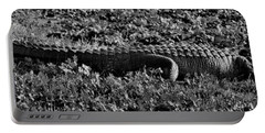 Sunny Alligator Black And White Portable Battery Charger