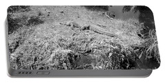 Portable Battery Charger featuring the photograph Sunny Gator Black And White by Joseph Baril