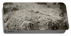 Portable Battery Charger featuring the photograph Sunny Gator Sepia  by Joseph Baril