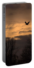 Sunset Eagle Portable Battery Charger